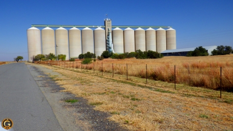 southafricansilos1