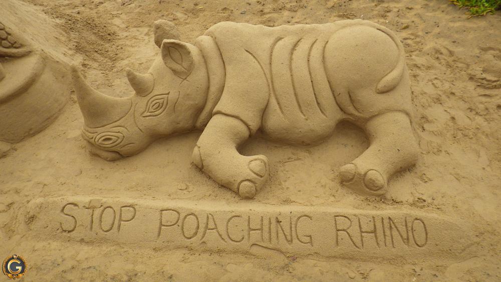 South_African_Rhino_Poaching1