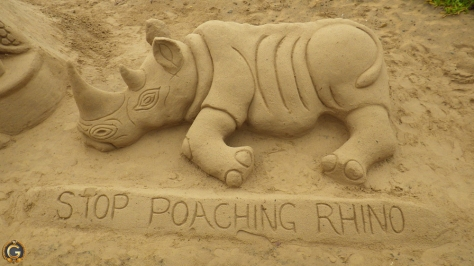 South_African_Rhino_Poaching1